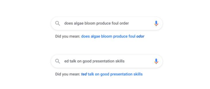 google poprawność pisowni